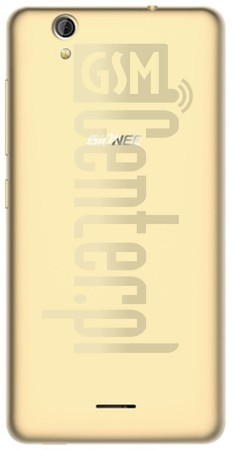 IMEI Check GIONEE Pioneer P5 Mini on imei.info