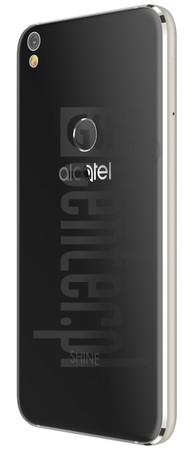 ALCATEL Shine Lite image on imei.info