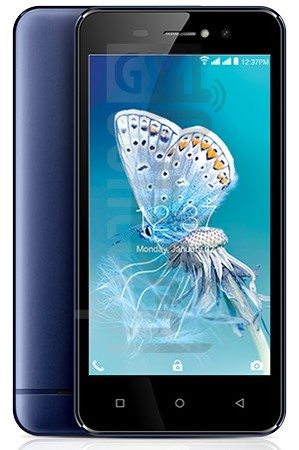 INTEX Aqua Amaze+ image on imei.info