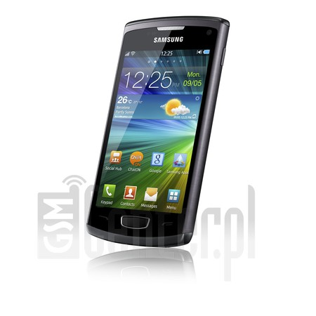 SAMSUNG S8600 Wave 3 image on imei.info