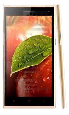 IMEI Check IBERRY Auxus Note 5.5 Gold Edition on imei.info