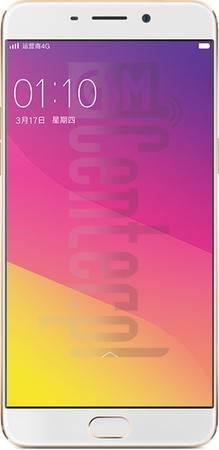 R9TM - Are your looking for a way to make your OPPO work