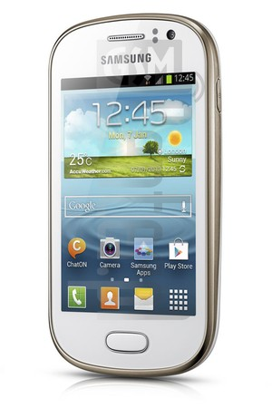 SAMSUNG S6810P GALAXY Fame image on imei.info
