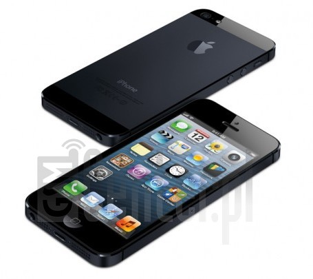 IMEI Check APPLE iPhone 5 on imei.info
