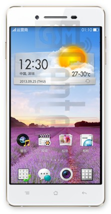 OPPO R1 R829T image on imei.info