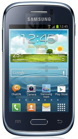SAMSUNG S6310L Galaxy Young image on imei.info