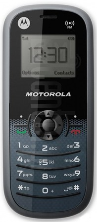 MOTOROLA WX161 US image on imei.info